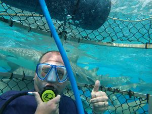 Bimini Shark Dive with IA