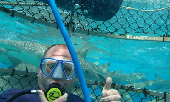 Bimini Shark Dive with IA