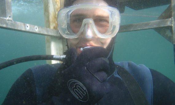Cage Diver in San Francisco
